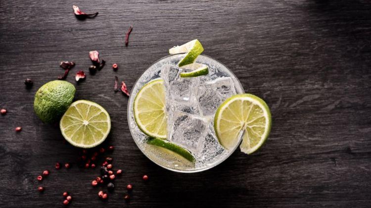Taller de Gin Tonics